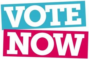 vote-now-540x361